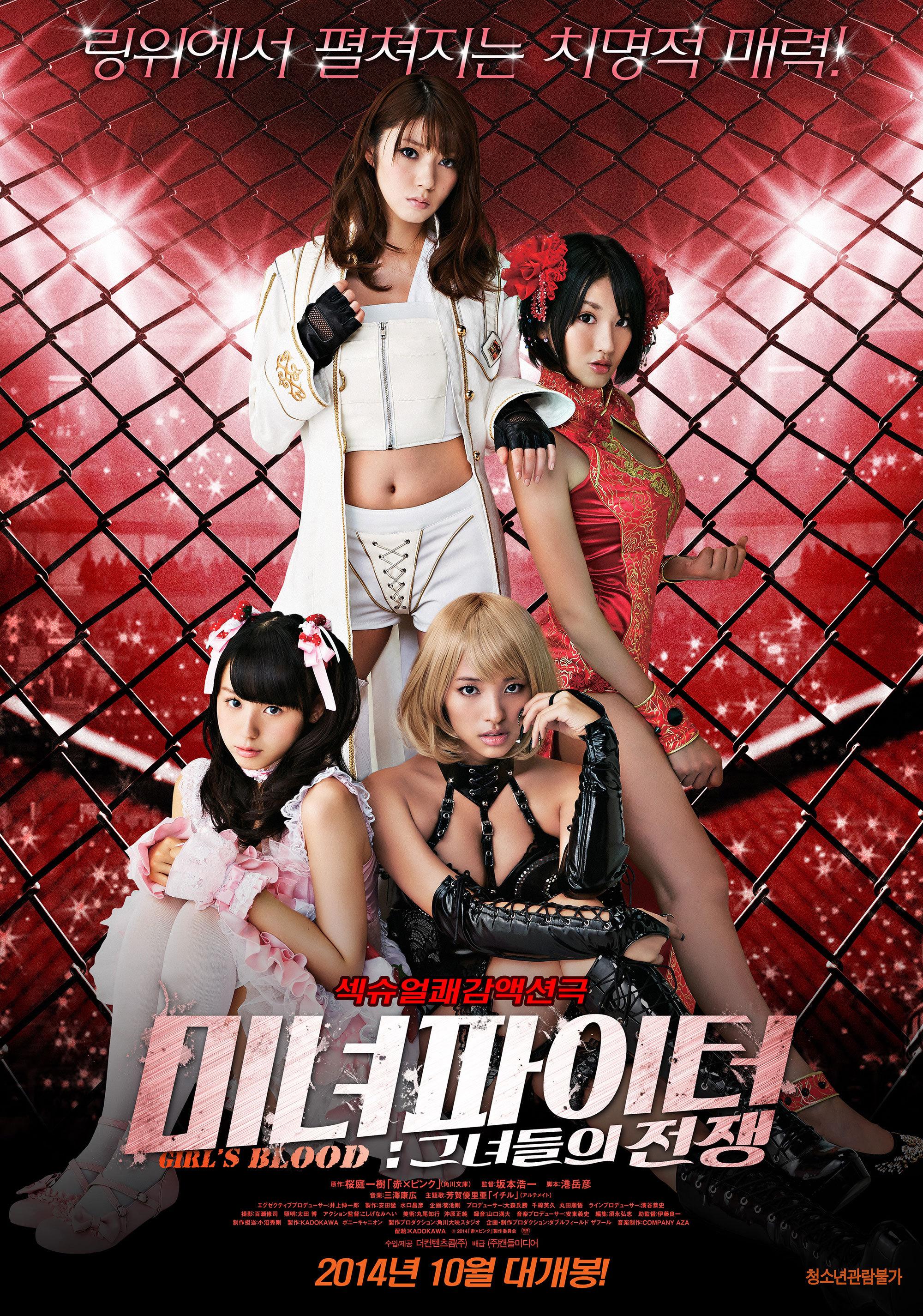 미녀 파이터 : 그녀들의 전쟁 (2014)